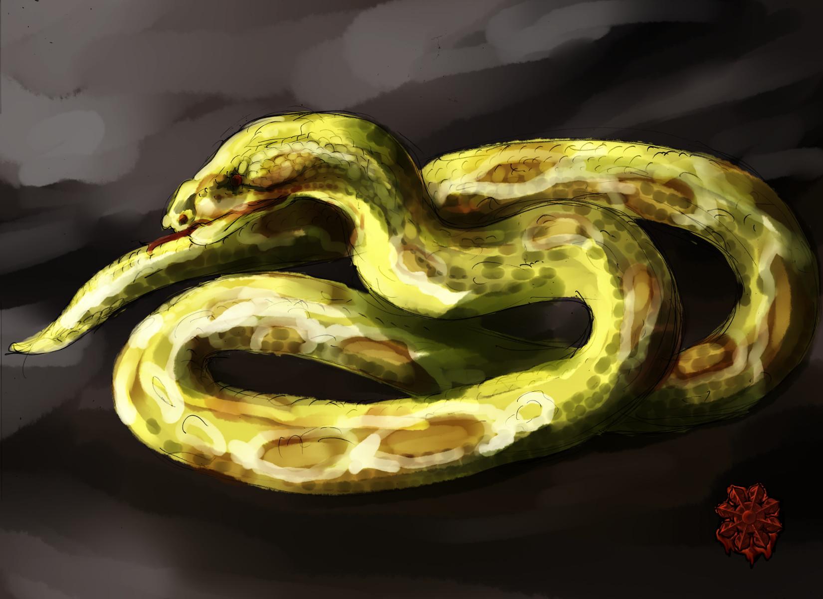 大黄色ヘビ