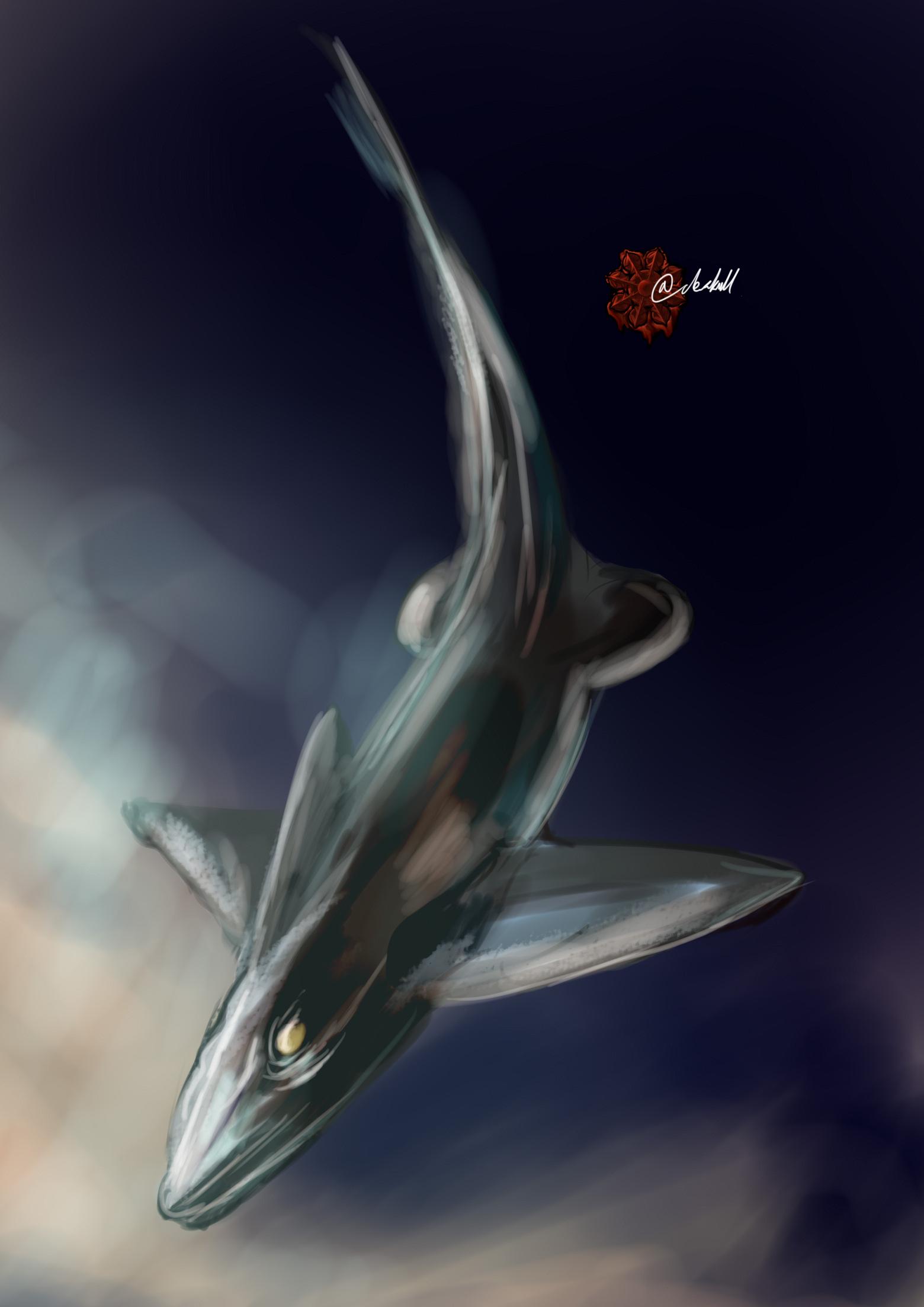 ムラサキギンザメ